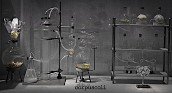 corpuscoli